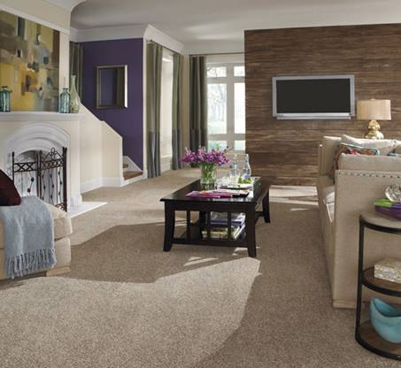Hosner-Carpet-One-Floor-and-Home-Canton-OH-Testimonials